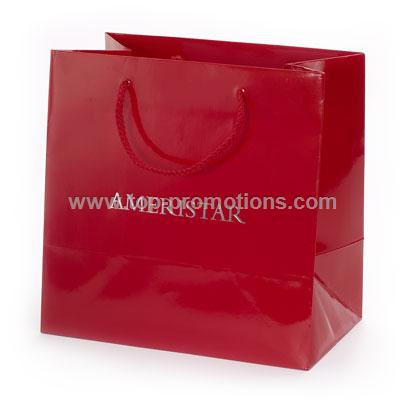 Gloss laminated Promo Paper Bag